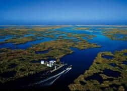 la-wetlands