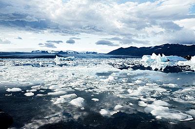 main-pic-arctic